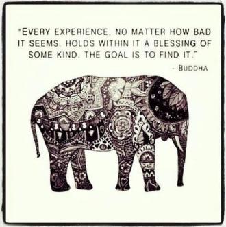 everyexperience